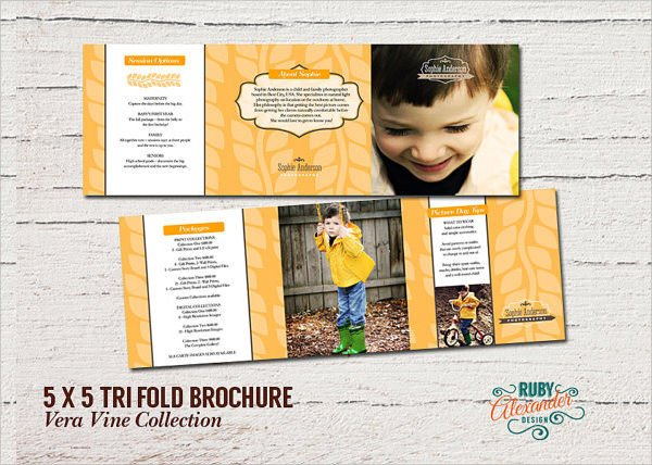 Photoshop Tri Fold Brochure Template 10 Tri Fold Brochures Psd Vector Illustrator