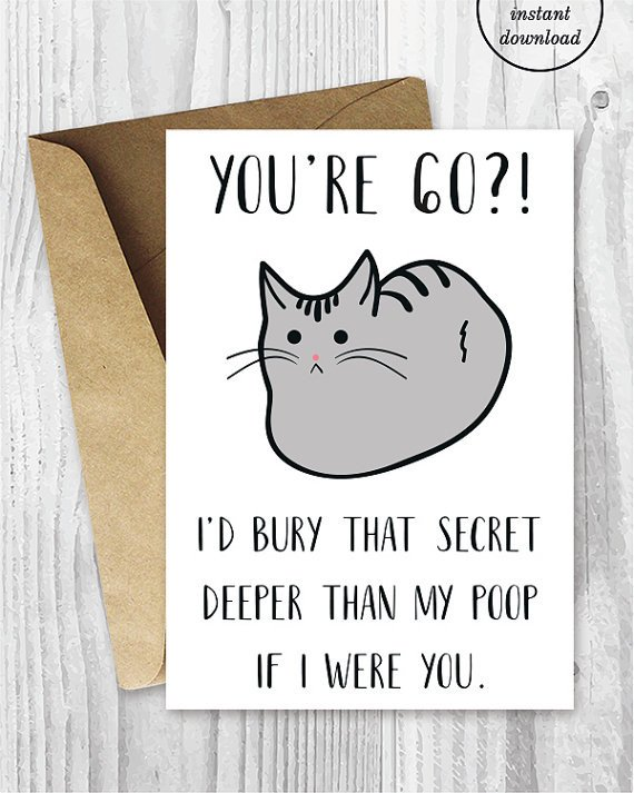 Printable Funny Birthday Cards Funny 60th Birthday Cards Printable Cat 60 Birthday Card