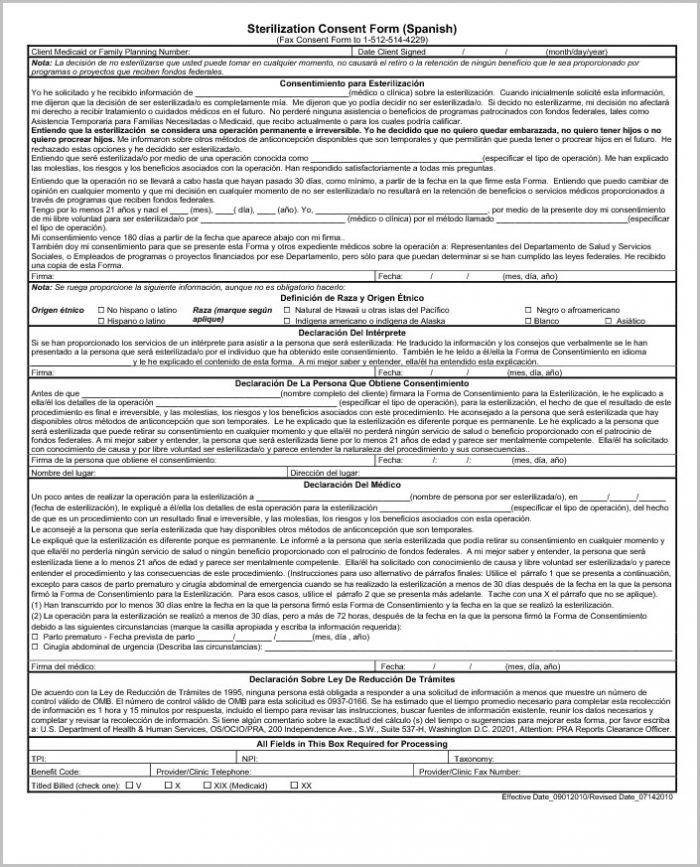 Printable Job Application In Spanish Free Printable Job Application In Spanish Job Applications