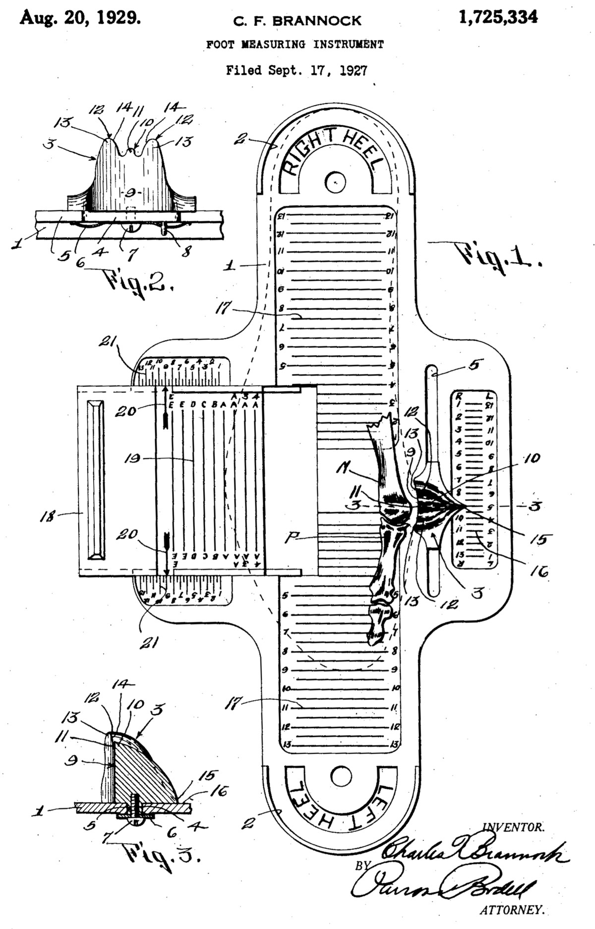 Printable Shoe Size Chart Brannock Device