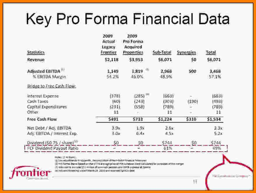 Pro forma Financial Statement Template 10 Pro forma Financial Statement Template