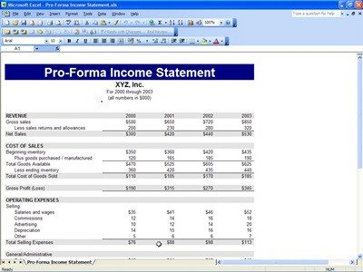 Pro forma Financial Statement Template Proforma In E Statement