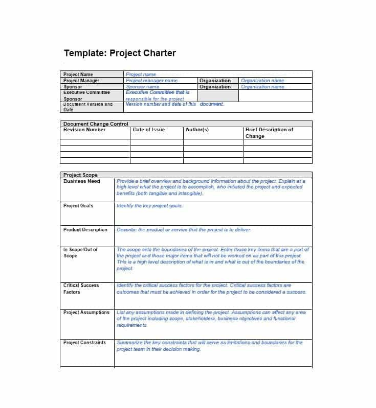 Project Charter Template Excel 40 Project Charter Templates & Samples [excel Word