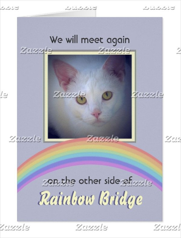 Rainbow Bridge Template 16 Pet Memorial Card Designs & Templates Psd Ai