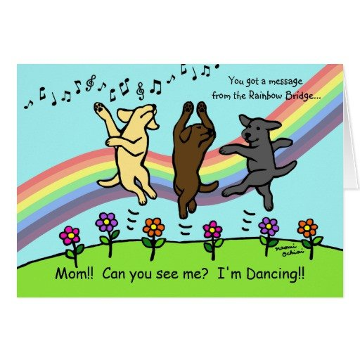Rainbow Bridge Template Dancing Labradors at the Rainbow Bridge Card