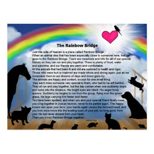 Rainbow Bridge Template Rainbow Bridge Poem Cards Rainbow Bridge Poem Card