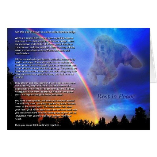 Rainbow Bridge Template Rainbow Bridge Sympathy Card