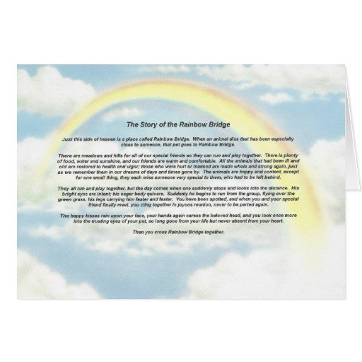 Rainbow Bridge Template Rainbow Notecard with the Rainbow Bridge Cards