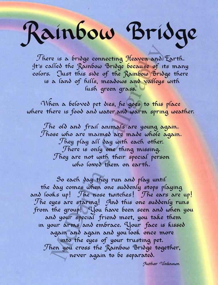 Rainbow Bridge Template the Rainbow My Heart Leaps Up when I Behold A Rainbow In T
