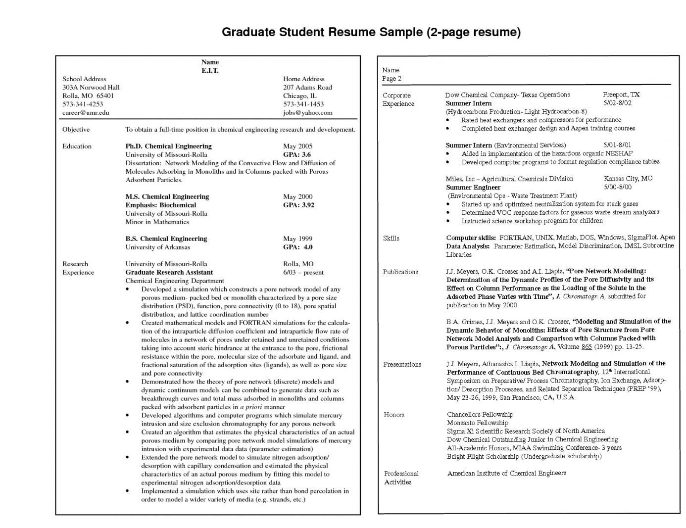Resume Template for Pages Resume Examples 2 Pages Examples Pages Resume