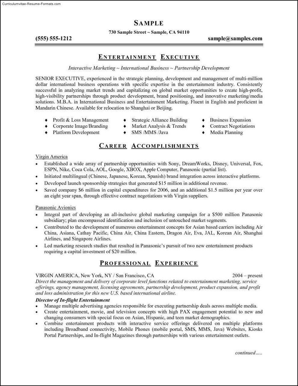 Resume Template Microsoft Word 2007 Resume Curriculumvitae