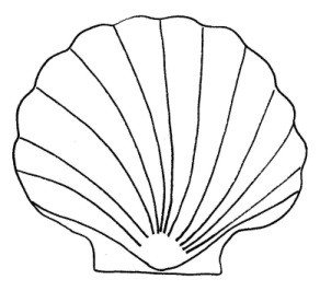 Seashell Template Free Printable for the Love Of Cardmaking by the Sea Shell