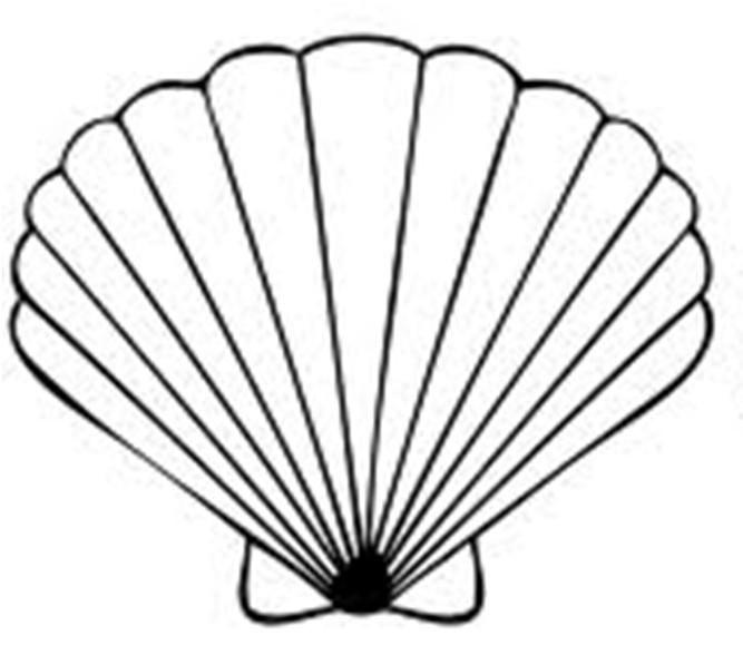 Seashell Template Free Printable Seashell Template Free Printable Clipart Best