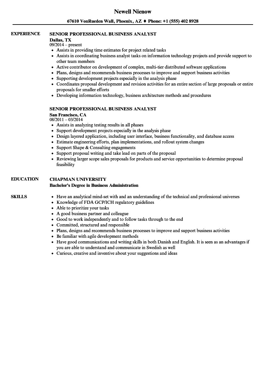 Senior Business Analyst Resume Senior Professional Business Analyst Resume Samples