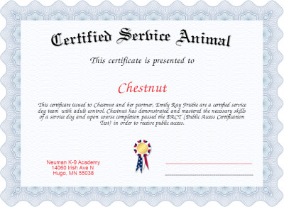 Service Dog Certificate Template Certified Service Animal Certificate