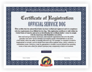 Service Dog Certificate Template Ficial Emotional Support Dog Vest Service Dog Vest and