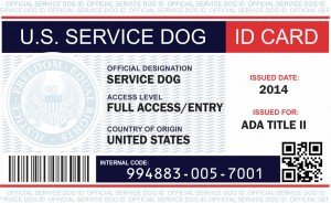 Service Dog Certificate Template Ficial therapy Dog Registration & Kits Service Dog