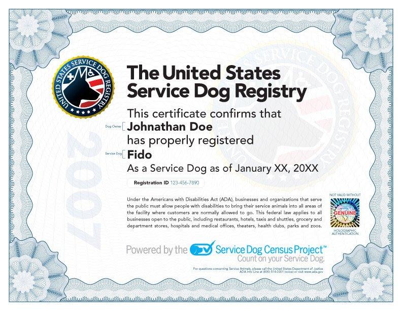 Service Dog Certificate Template Service Dog Certificate