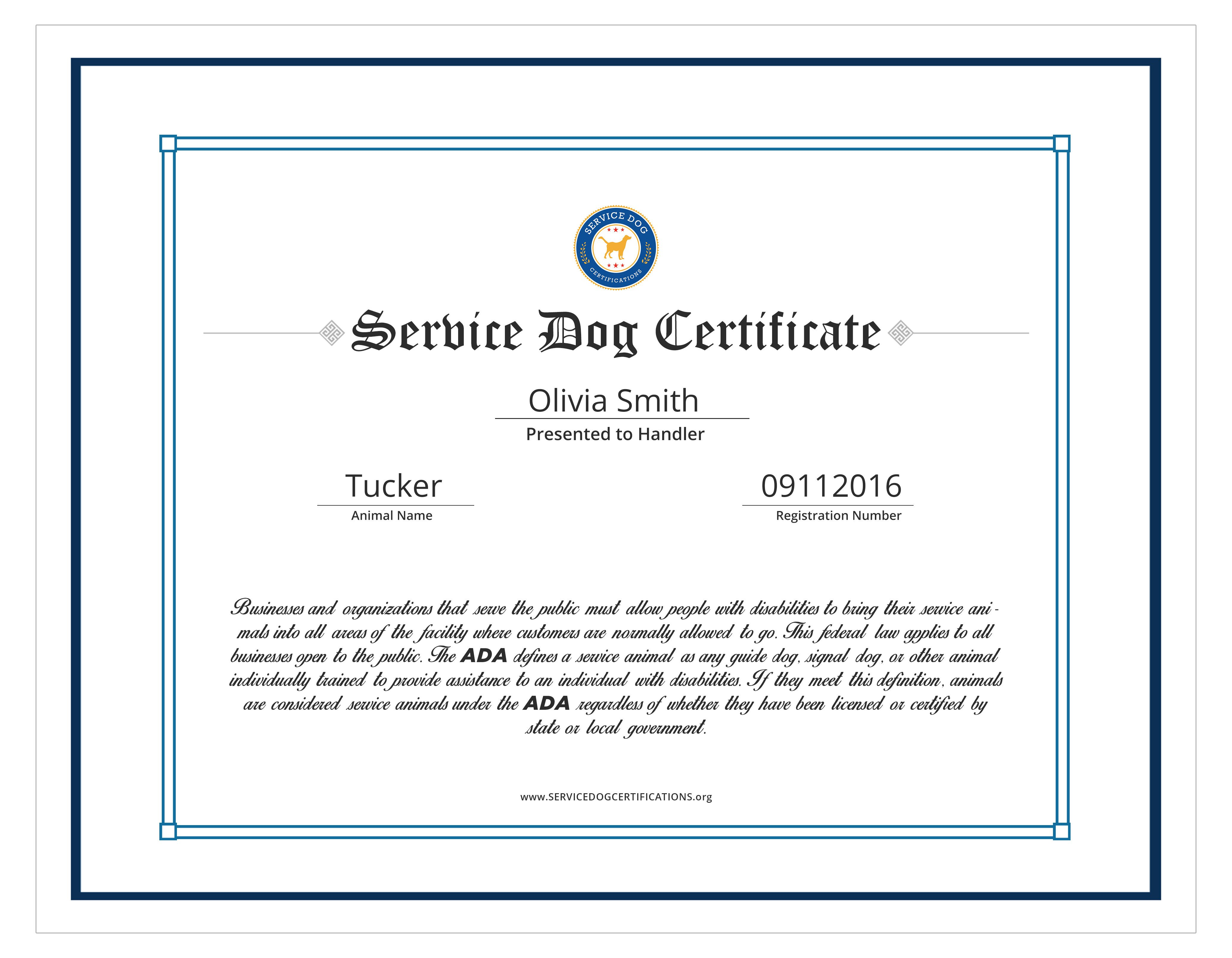 Service Dog Certificate Template Service Dog Certifications Id