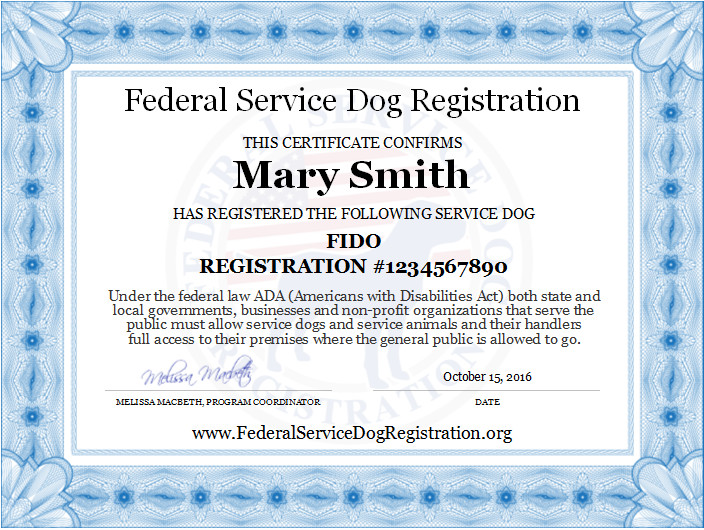Service Dog Certificate Template Service Dog Registration Digital Certificate