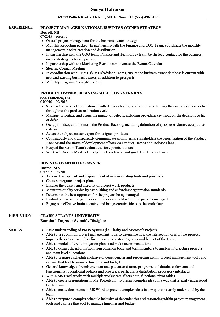 Small Business Owner Resume Business Owner Resume Samples