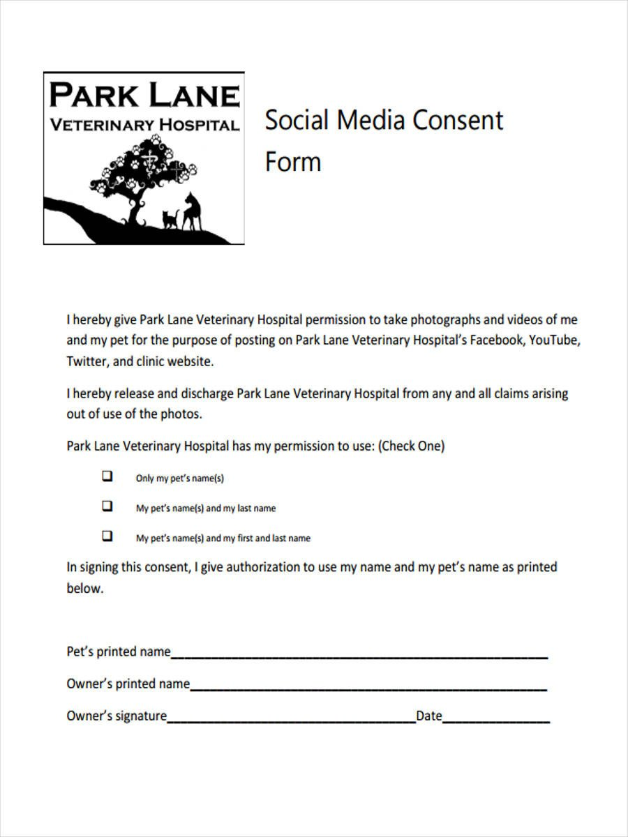 Social Media Release form 8 Media Consent form Samples Free Sample Example