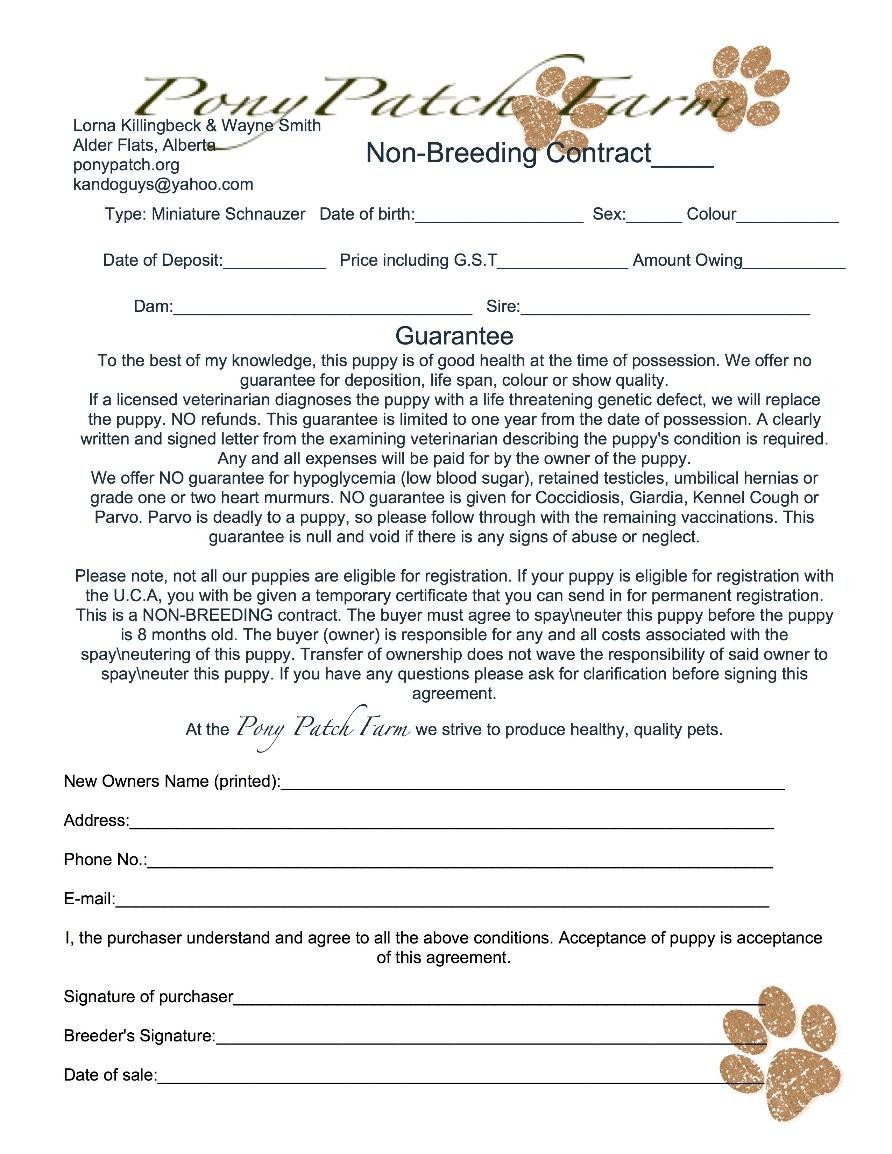 Spay and Neuter Contract Template Health Guarantee Miniature Schnauzer Edmonton