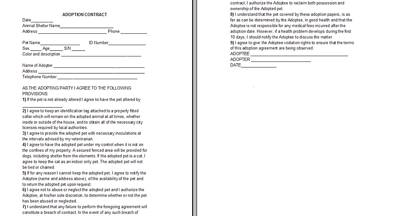 Spay and Neuter Contract Template Yorkie Adoption Contract Yorkiepassion