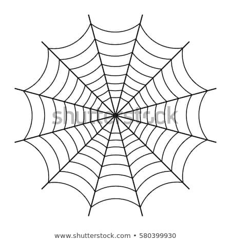Spider Web Outline Spider Web isolated White Vector Stock Vector