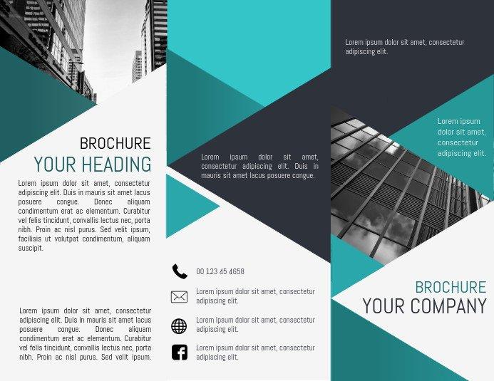 Three Fold Brochure Template Tri Fold Brochure Template