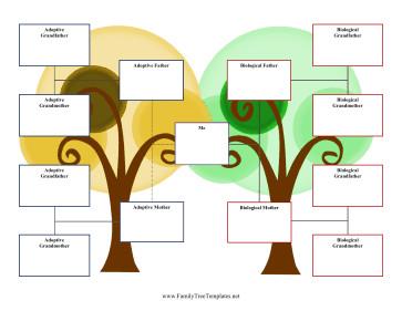 Three Generation Family Tree 3 Generation Adoption Family Tree Template