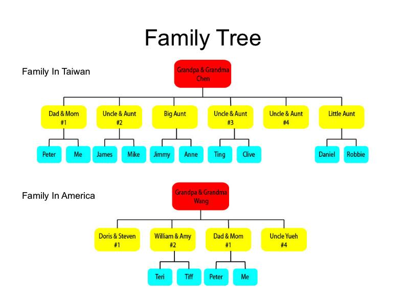 Three Generation Family Tree Free Program Three Generation Family Tree