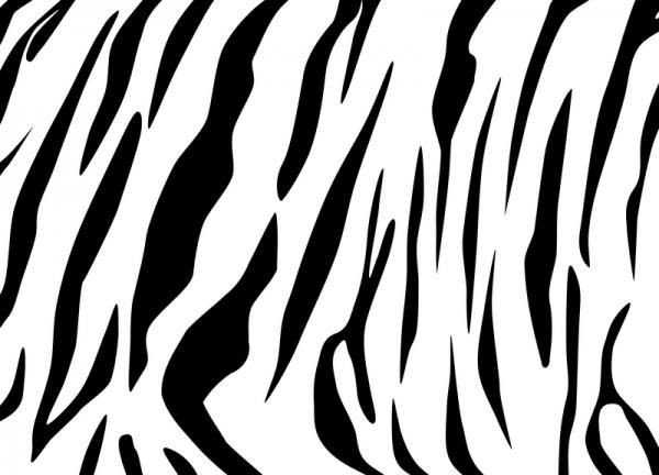 Tiger Stripe Stencil Printable Tiger Stripes Lovetoknow I Printed This Out and Used It