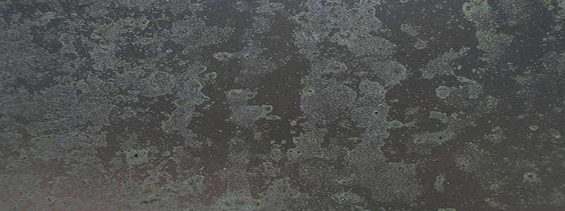 Transparent Glass Texture Png Abandoned In the forest
