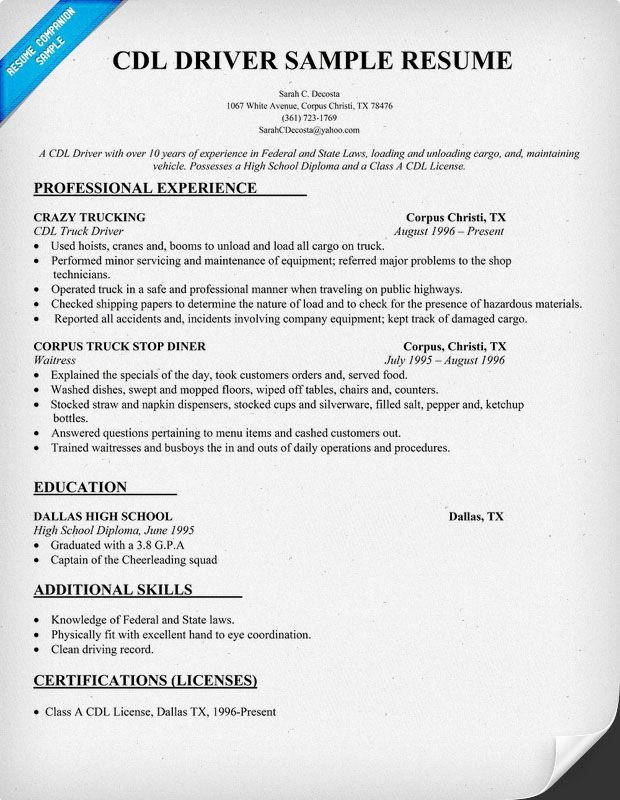 Truck Driver Resume Template Cdl Driver Resume Sample Resume Panion