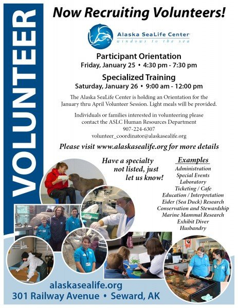 Volunteer Recruitment Flyer Template Volunteer Flyer – Seward City News