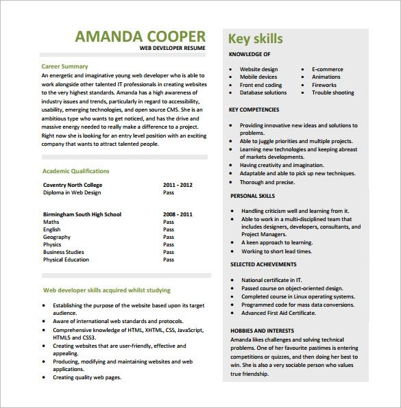Web Developer Resume Examples 11 Web Developer Resume Templates Doc Pdf