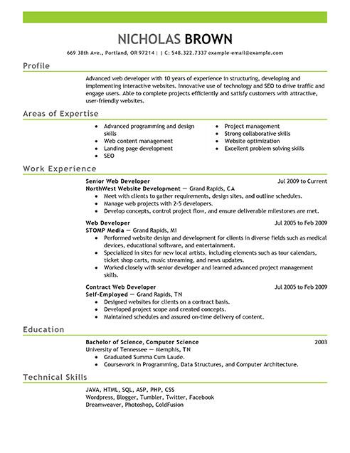 Web Developer Resume Examples Best It Web Developer Resume Example