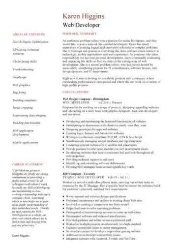 Web Developer Resume Examples Web Developer Resume Example Cv Designer Template