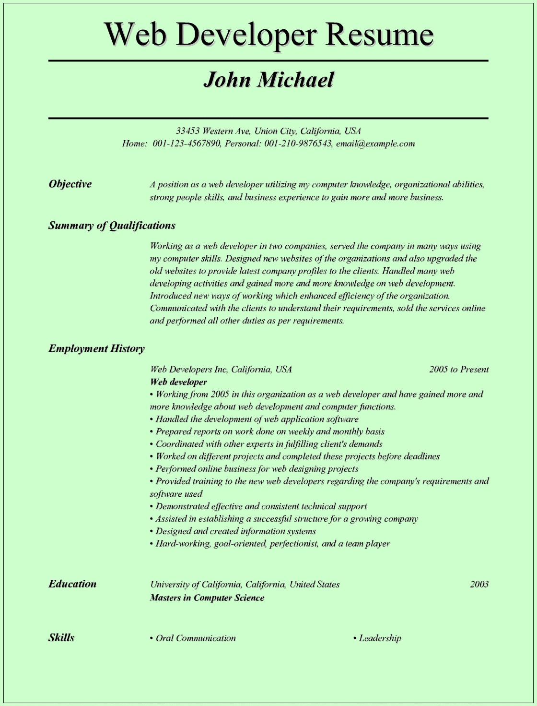 Web Developer Resume Examples Web Developer Resume Template for Microsoft Word C
