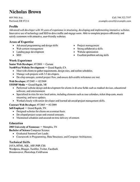 Web Developer Resume Sample Best It Web Developer Resume Example