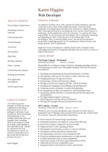 Web Developer Resume Sample Web Developer Resume Example Cv Designer Template