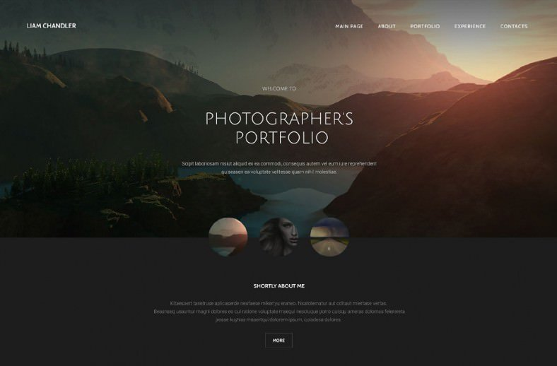 Web Template for Photographer 36 Portfolio Website themes & Templates