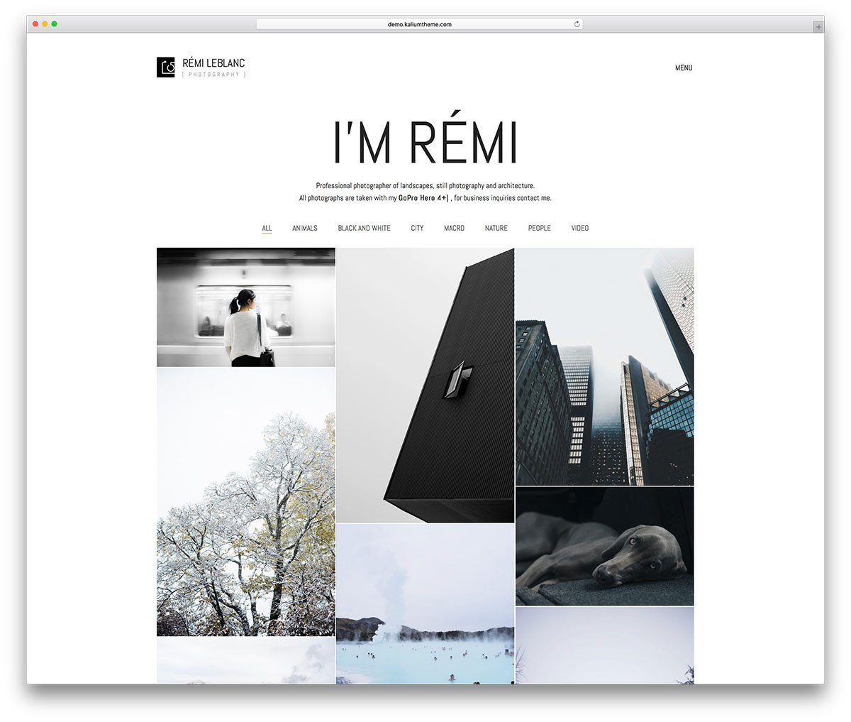 Web Template for Photographer Wordpress Graphy themes for Best Graphers