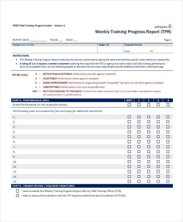 Weekly Progress Report Templates Progress Report Template 55 Free Pdf Ms Word Google