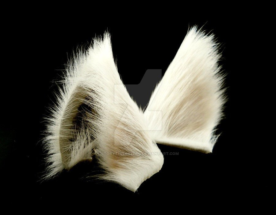 Wolf Ears Template White Wolf Ears Inumimi by Storytellerzero On Deviantart