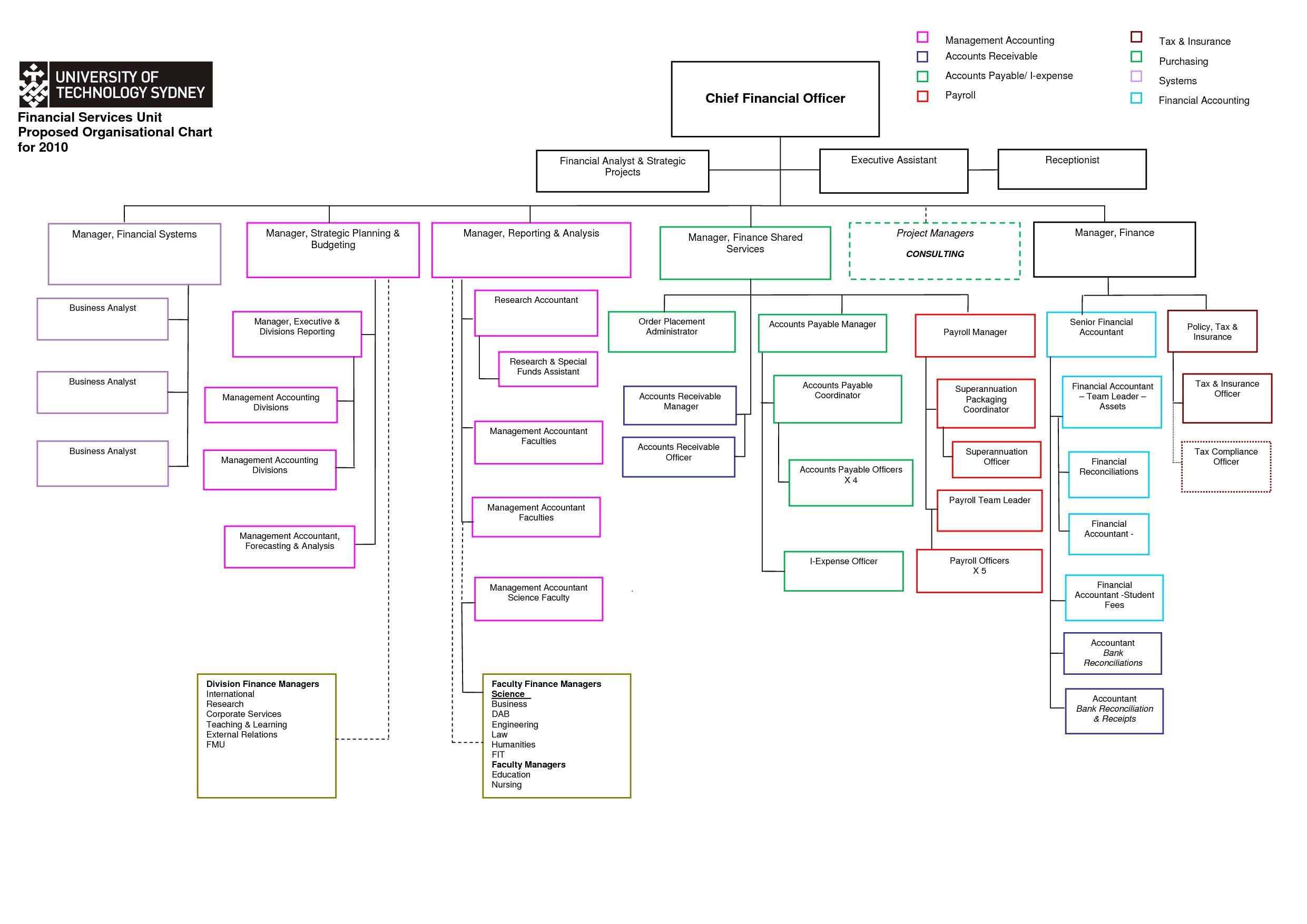 Word organization Chart Template organizational Chart Template Word